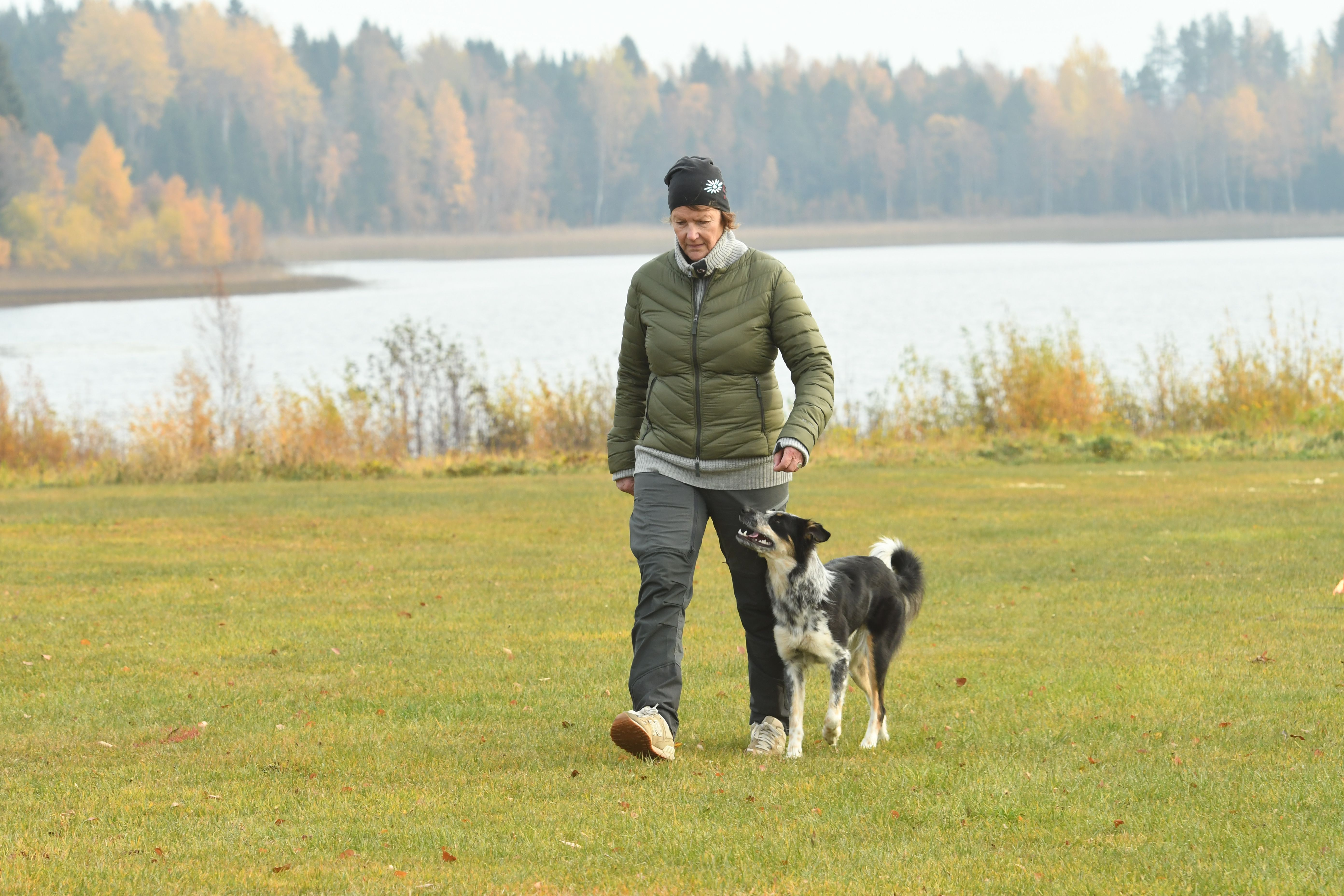 Sport Dog Academy, Fotograf Lena Eriksson, Formtoppa hunden